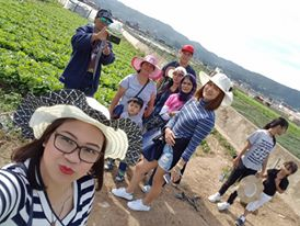 Strawberry Farm, La trinidad Benguet